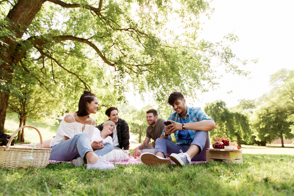 picnicking in the park